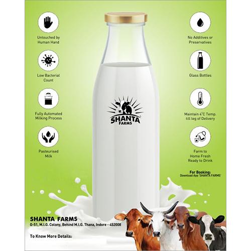 Organic Cow Milk