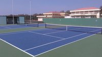 Synthetic Surface Coating 8 layer