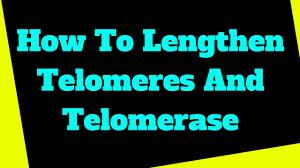 Telomere Diagnose And Repair