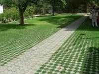 Grass Paver Block