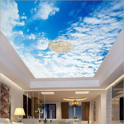 3D Transparent PVC Ceiling FilmDesign