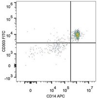 cd303 antibody