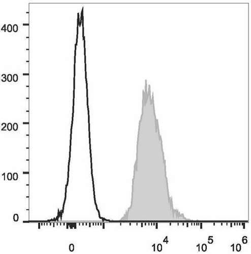 cd147 antibody