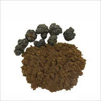 Morinda Powder