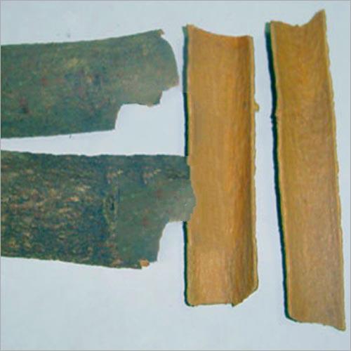 Cinnamonum Cassia Extract