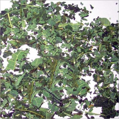 Carica Papaya Leaves