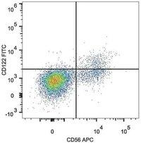 cd122 antibody