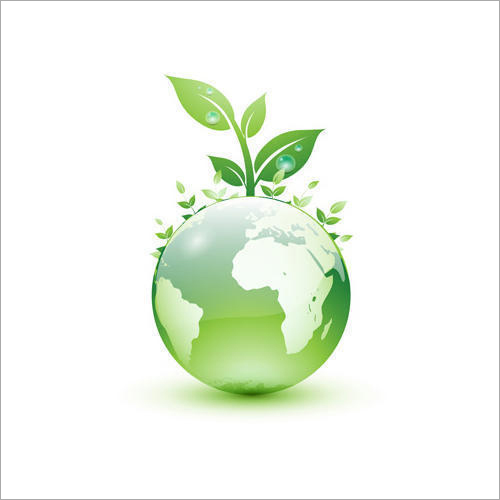 Environmental Consultant Service