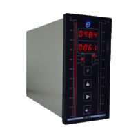 DPI 160 2 - Dual Channel Bargraph Indicator