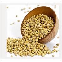 Whole Dhania Seed