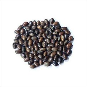 Mucuna Bracteata Seed
