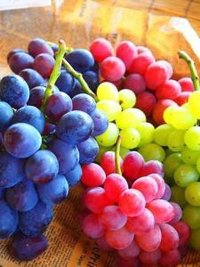 Fresh Seedless Grapes for Sale