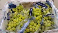 Fresh Seedless Grapes