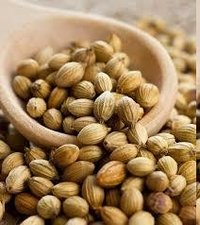 Coriandor Seeds