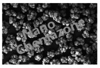 Iron Metal Organic Framework
