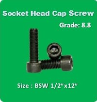 Socket Head Cap Screw BSW 1 2x12