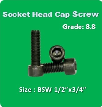 Socket Head Cap Screw BSW 1 2x3 4