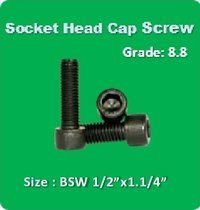 Socket Head Cap Screw BSW 1 2x1.1 4