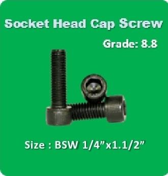 Socket Head Cap Screw BSW 1 4x1.1 2