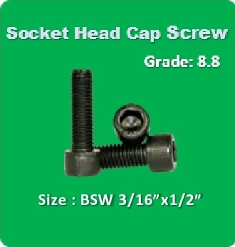 Socket Head Cap Screw BSW 3 16x1 2