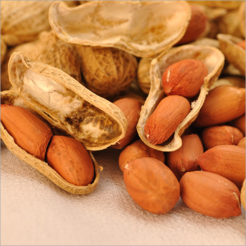 Organic Peanut With Shell