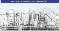 Raw Grain Intelligent Processing Unit
