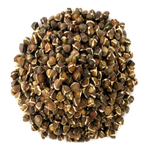 Organic Spices Seeds