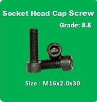 Socket Head Cap Screw M16x2.0x30
