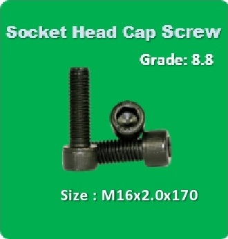 Socket Head Cap Screw M16x2.0x170