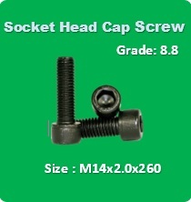 Socket Head Cap Screw M14x2.0x260