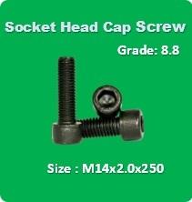 Socket Head Cap Screw M14x2.0x250