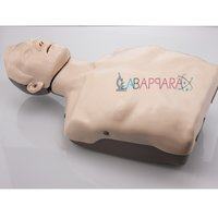 Half Body CPR Training Manikin without Light