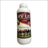 RV Liv