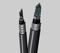 BELDEN ARMORED CONTROL INSTRUMENTATION CABLES