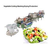 Vortex Vegetable Washing Machine