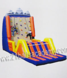 Wall Climbing Bouncy 14x30