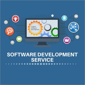 Software Development Consulting Service