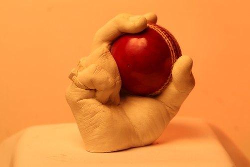 cricket lover 3d kit