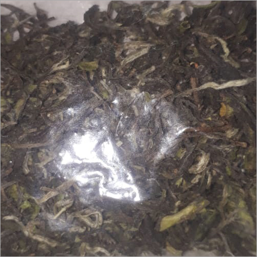 White Tea Leaf