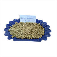 Arabica Washed Coffee Beans