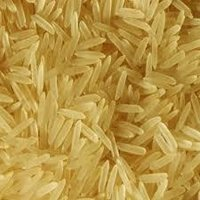 1121 Basmati Golden sella