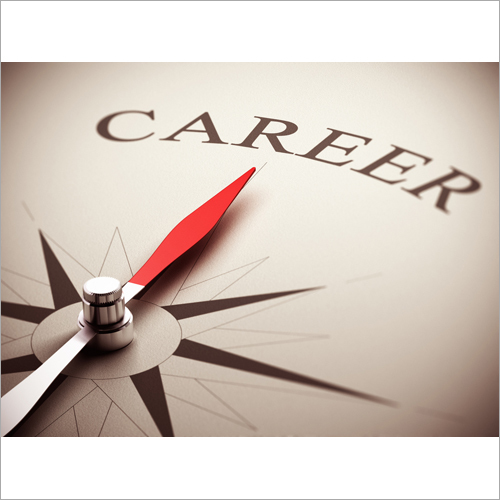 Career Consultation Astrological Service