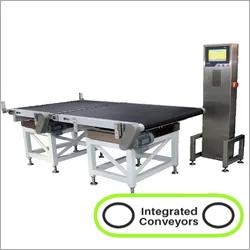 Online Check weigher Belt Conveyor