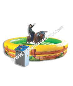 Bull Rides 16 ft
