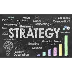 Business Strategy Support