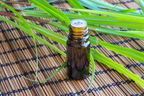 Green Lemongrass Oil