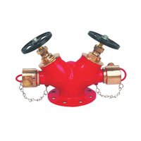 Double Headed Hydrent Valve