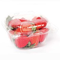 Clamshell Strawberry Punnet