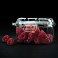Transparent Fruit Packaging Punnet