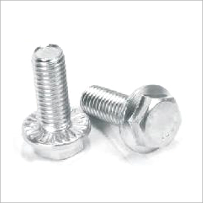 Industrial Stainless Steel Bolt